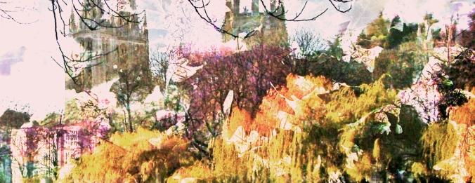burgando otoño