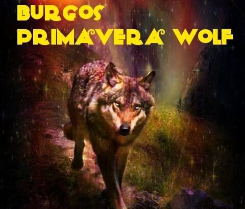 burgos_wolf