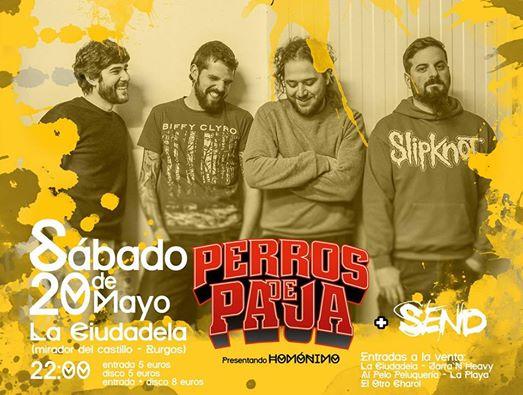 perros_de_paja_concierto