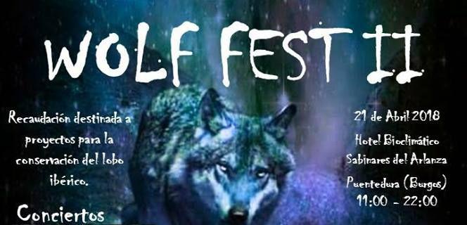 wolffest2_burgos