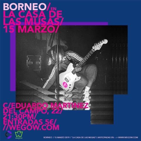 borneo_musas